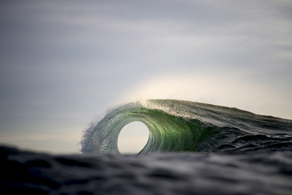 Electrify Print Vol 1: Dive in with Ray Collins