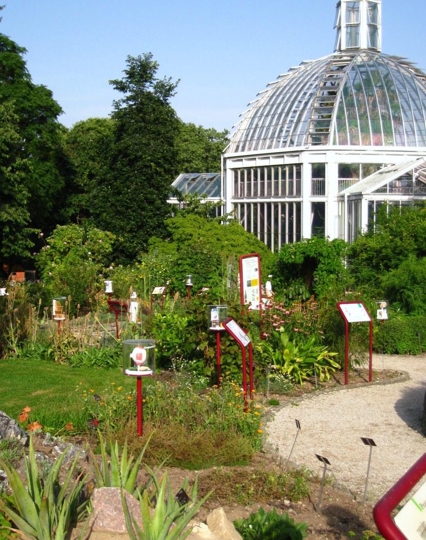 Geneva Botanical Garden_2.png