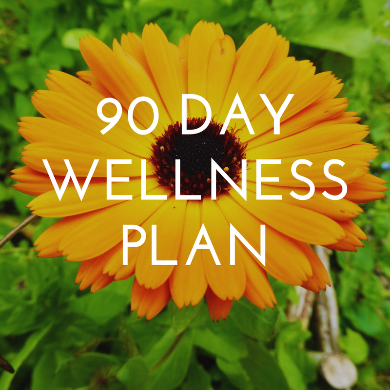 90 Day Wellness Plan.png