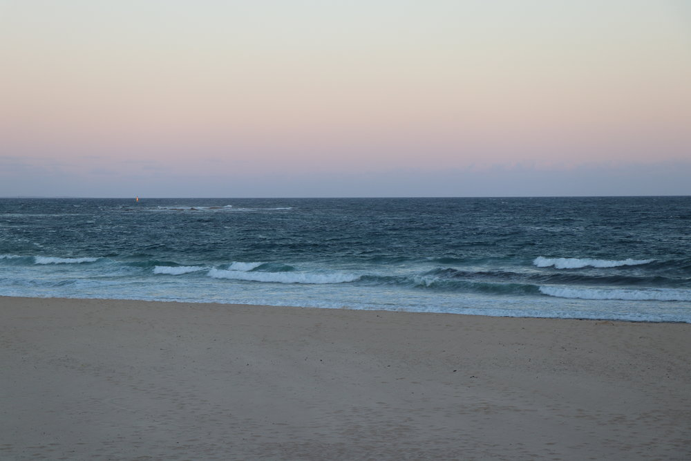 View of Nobby's beach at sunset.