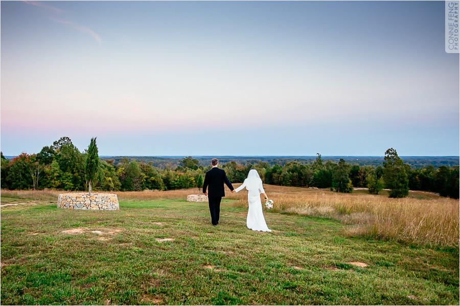 runnymede-plantation-rougemont-nc-wedding-photographer-61.jpg