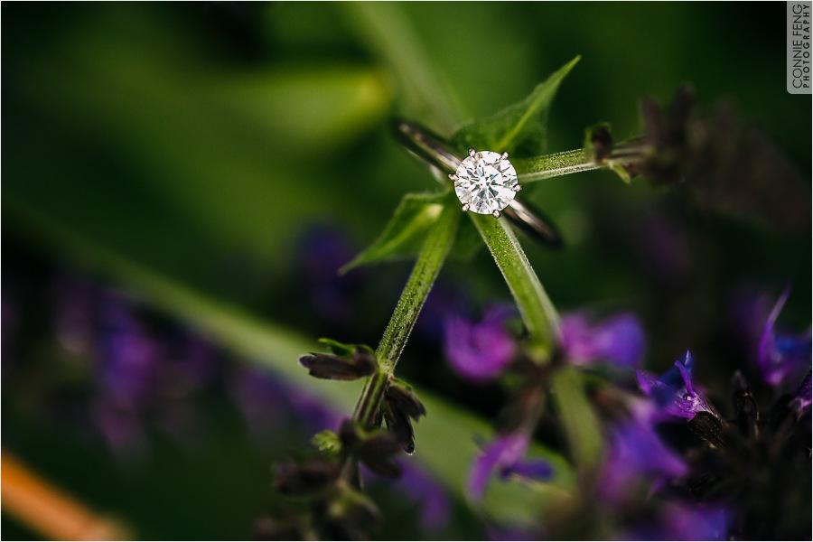 stephanie-jonah-engagement-40.jpg