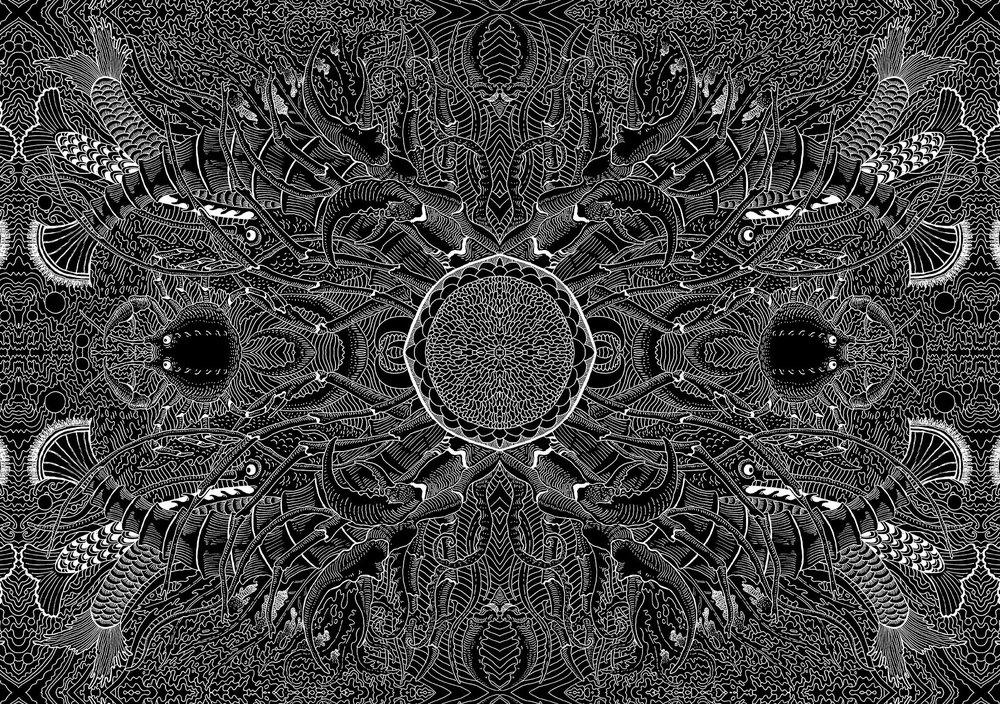 crustaceans-monchrome.50x70.jpg