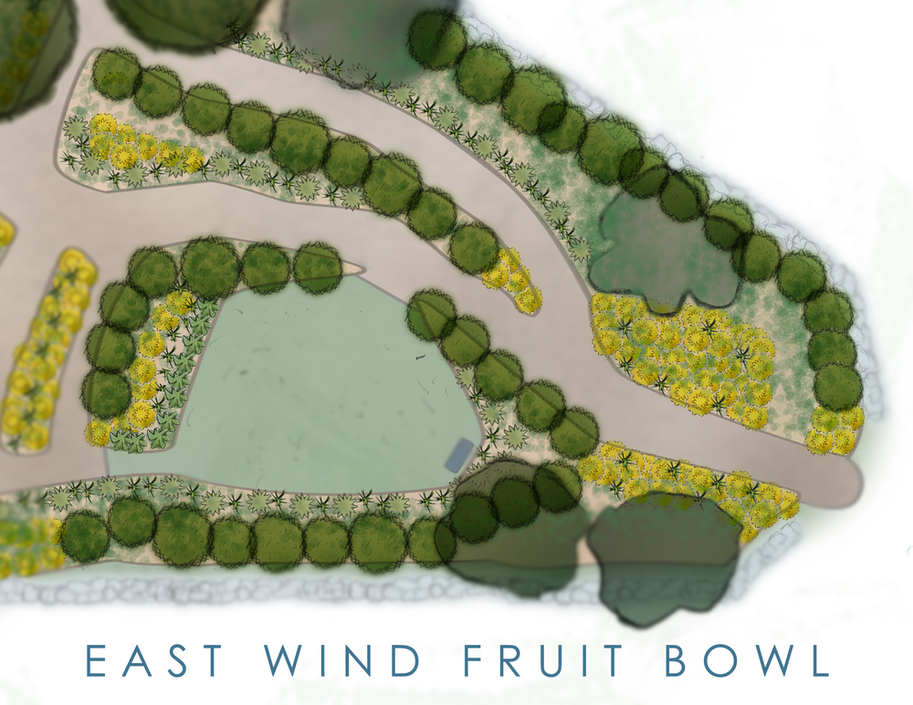 east_wind_fruit_bowl.jpg
