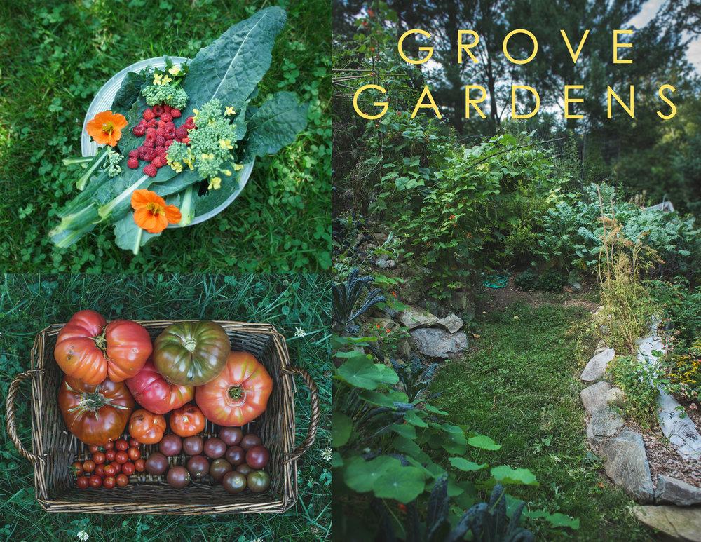 GROVE-GARDENS2.jpg