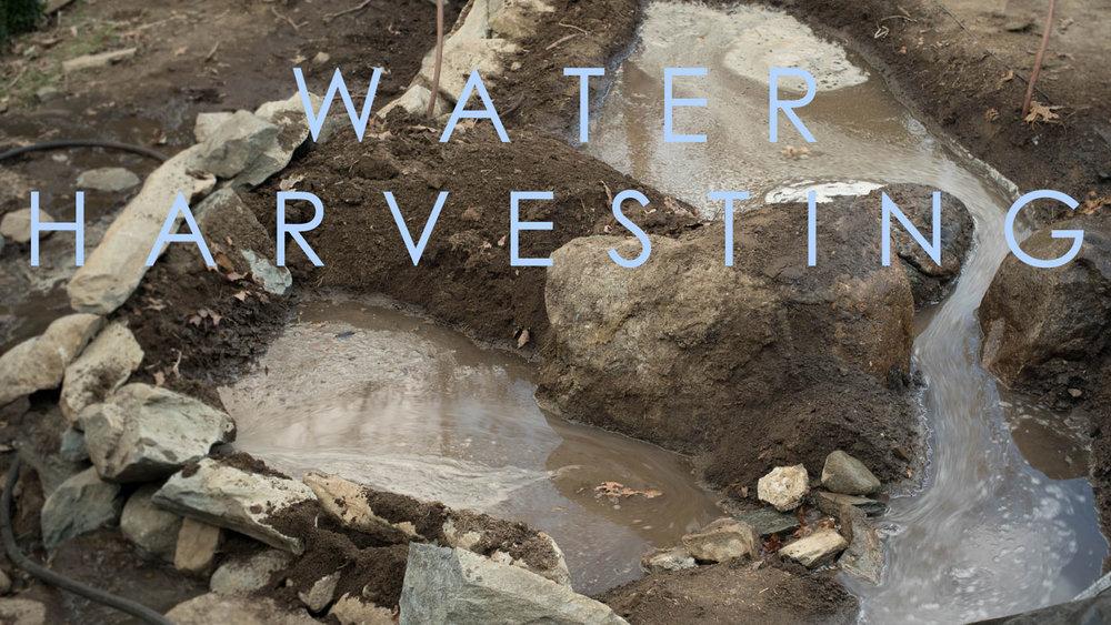 water-harvesting-title.jpg