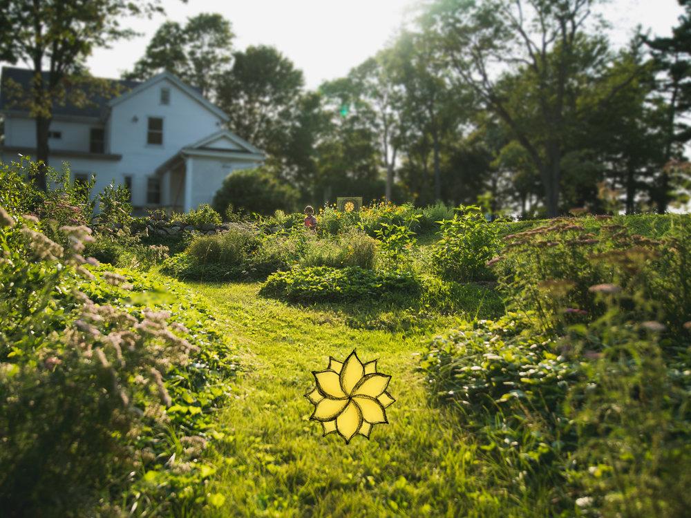 Healthy Gardens - Require Healthy Invertebrates