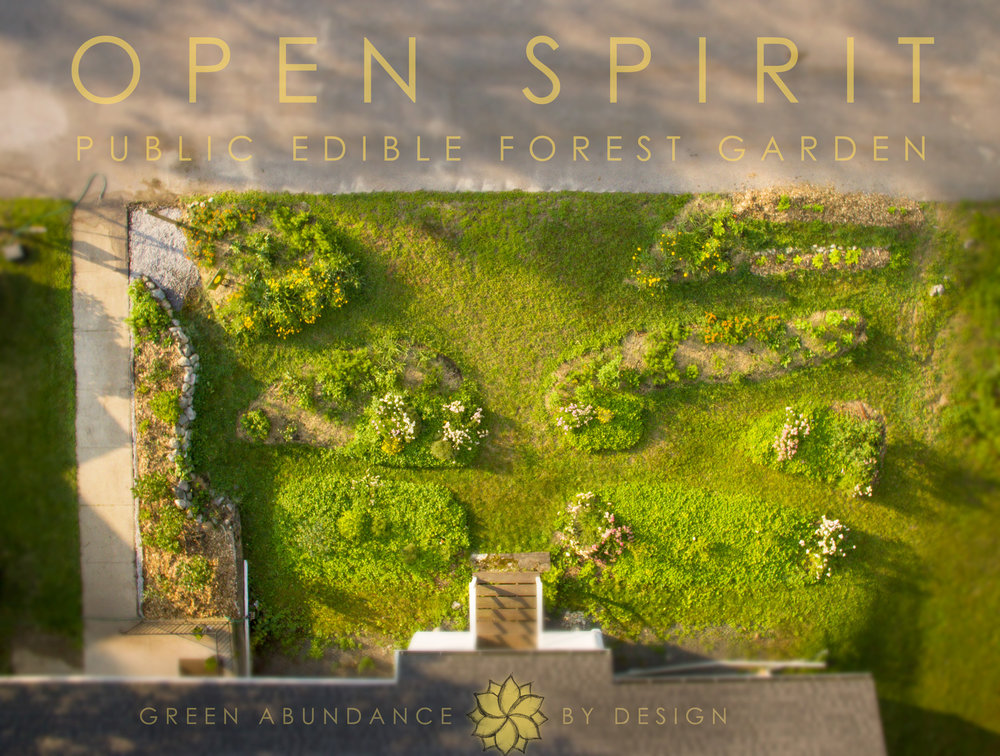 Open-Spirit-EFG-map-drone.jpg