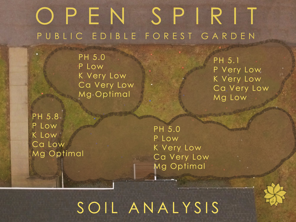 OS SOil Analysis.jpg