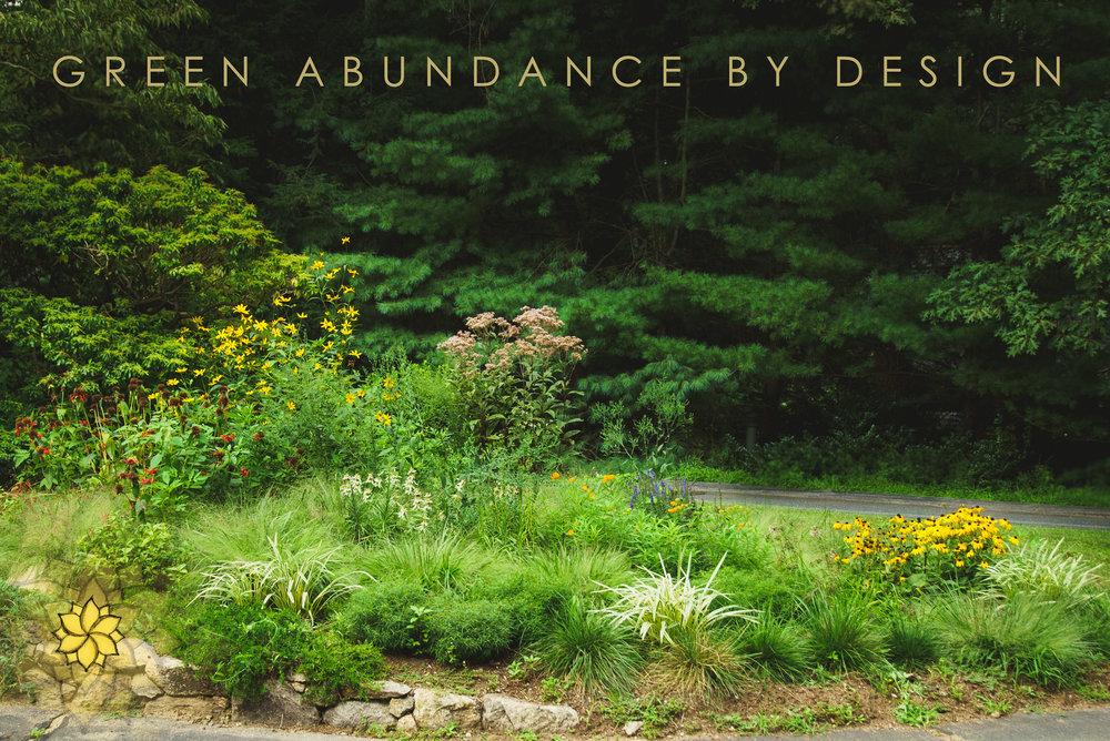 Suburban-Woodland-Meadow-Garden-2.jpg