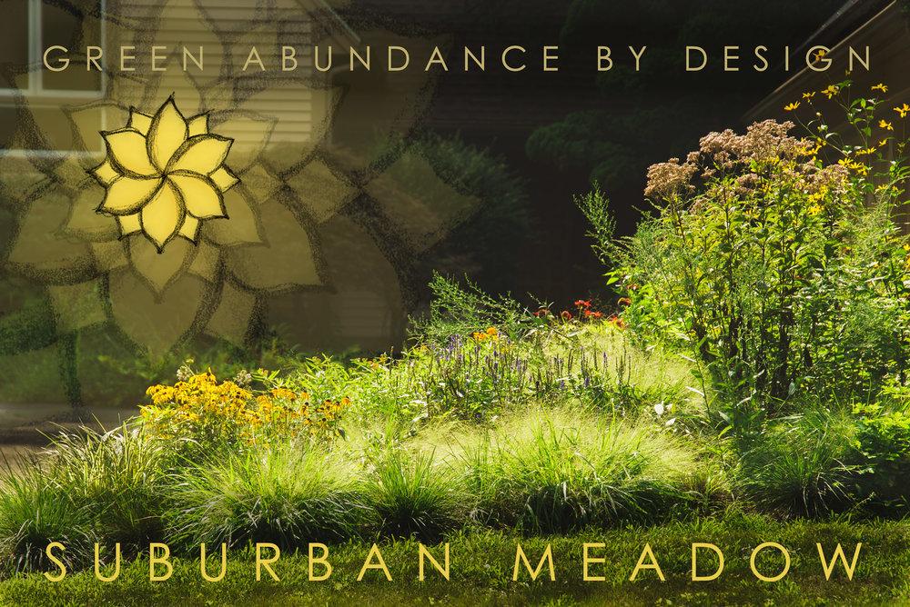 Suburban-Woodland-Meadow-Garden-3.jpg