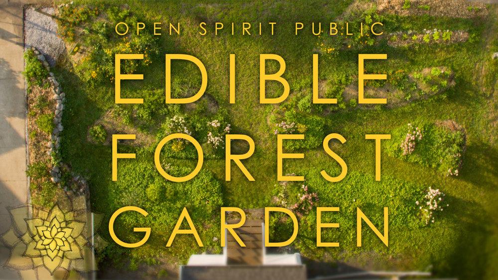 Open Spirit Public Edible Forest Garden