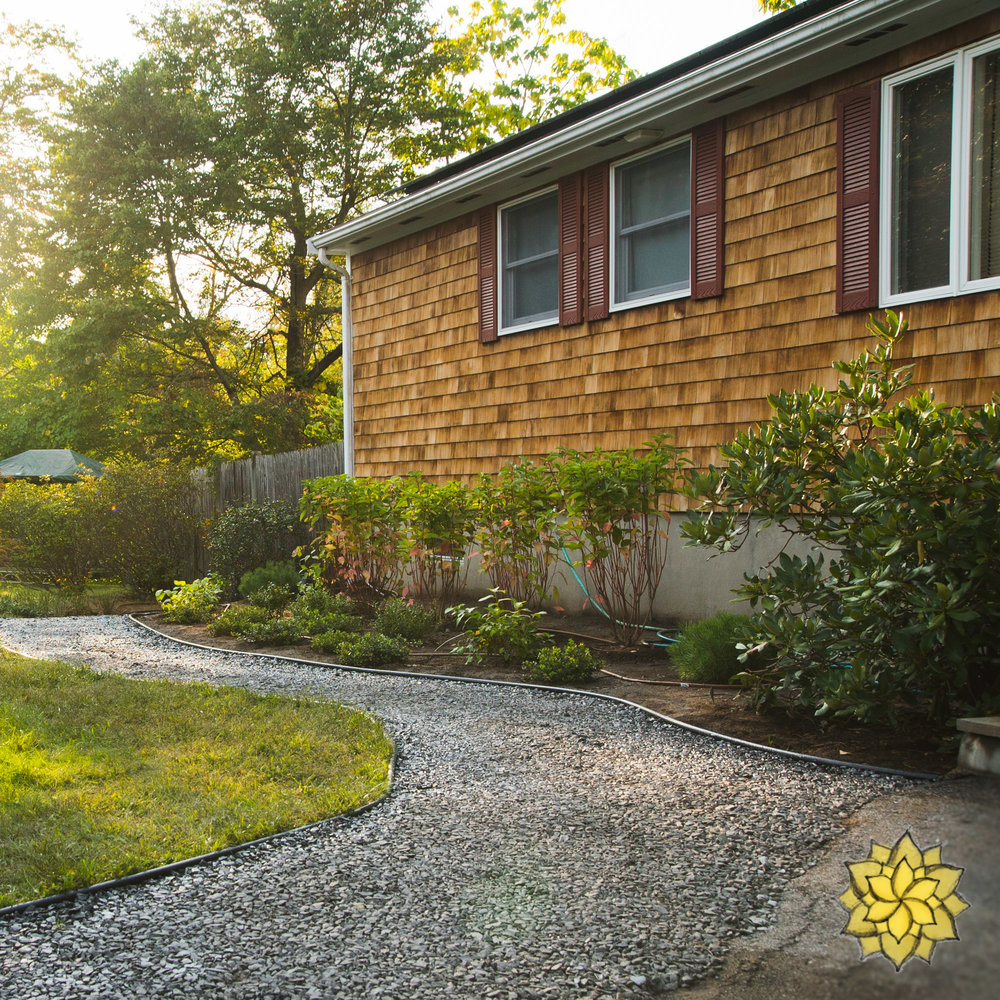 Native Plant Gardens - We design with Native Plants to deepen a landscape's ecological function. Providing a host of benefits to wildlife and Natural environment, Native Plants play an important role in improving Suburbia and Nature's relationship to one another.