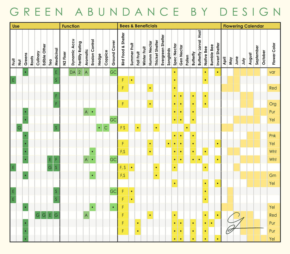 Plant Matrix - With our extensive plant database, we present you with a visual explanation of the functions of the plants we recomend. From the big picture down to the individual, we want our clients to see the value and benefits each plant has on their landscape.