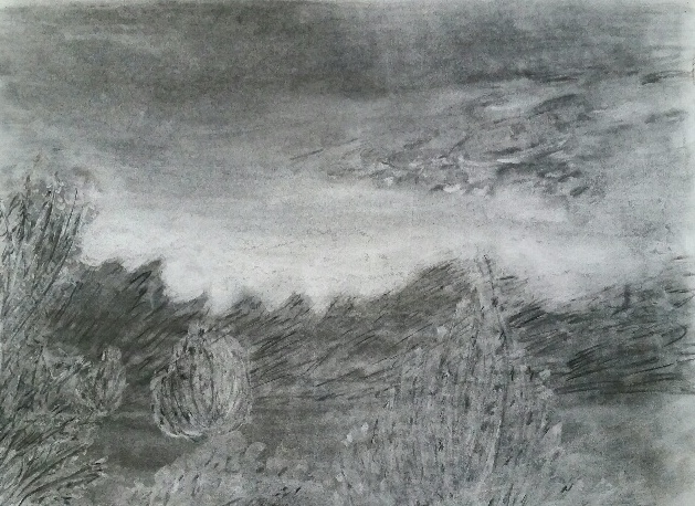 Wind in Trees, Charcoal, NFS