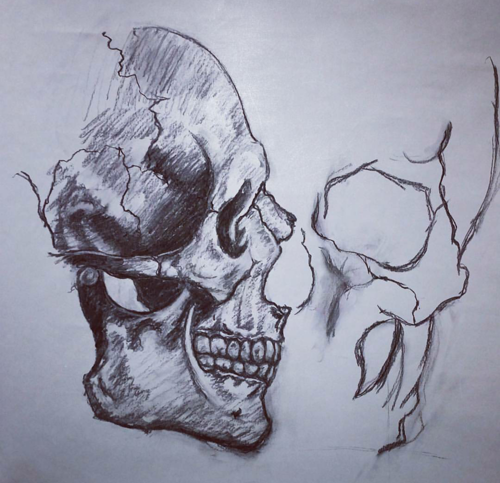 skull sketch.png