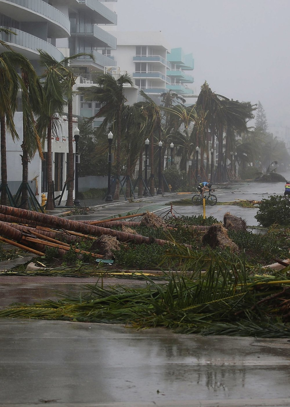 MIAMI   The city's not underwater, but the growing frequency of hurricanes - and the insurance claims that go with them - have rendered the city uninsurable.  Fortunes were lost here, and the now-homeless former tenants of wrecked homes flood northward into other cities.