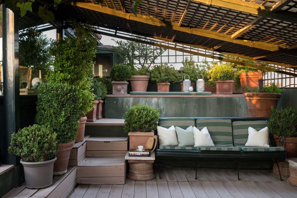 Garden Suite terrace - pots of plants
