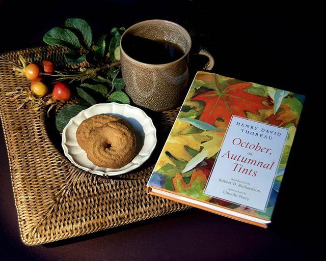Tea & Thoreau | Gorgeous watercolor illustrations bring Thoreau's autumn-inspired musings to life. Perfect teatime reading... 🍂🍁 ☉ ▪ #teatime #lifessimplepleasures #teaandbooks #readinglist #henrydavidthoreau #october #autumnaltints #onmybookshelf  #teaandbiscuits #goodbyeoctober