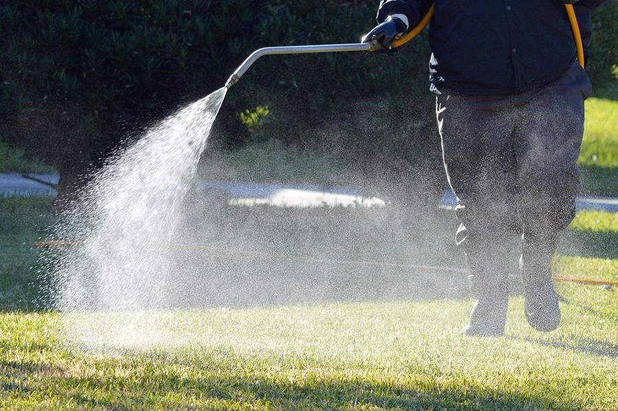 lawn-fertilizer-service-dallas-fort-worth.jpg