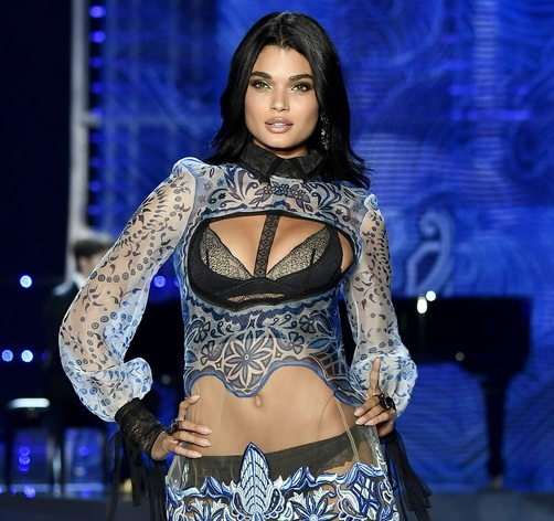 VICTORIA'S SECRET FASHION SHOW 2017 (CLICK TO VIEW GALLERY)