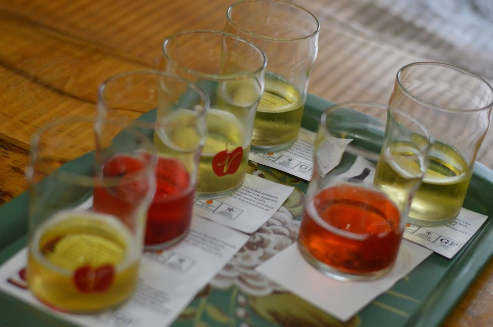 cider tasting in Michigan