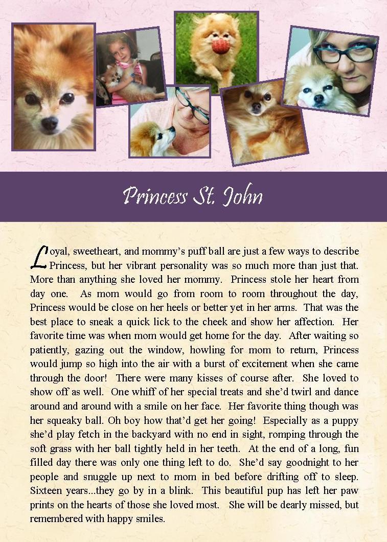 2017-08-24 Princess St John.jpg