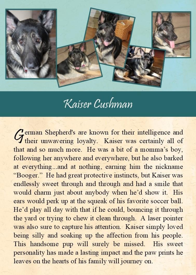 2017-09-22 Kaiser Cushman.jpg