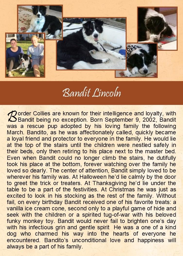 Bandit Lincoln
