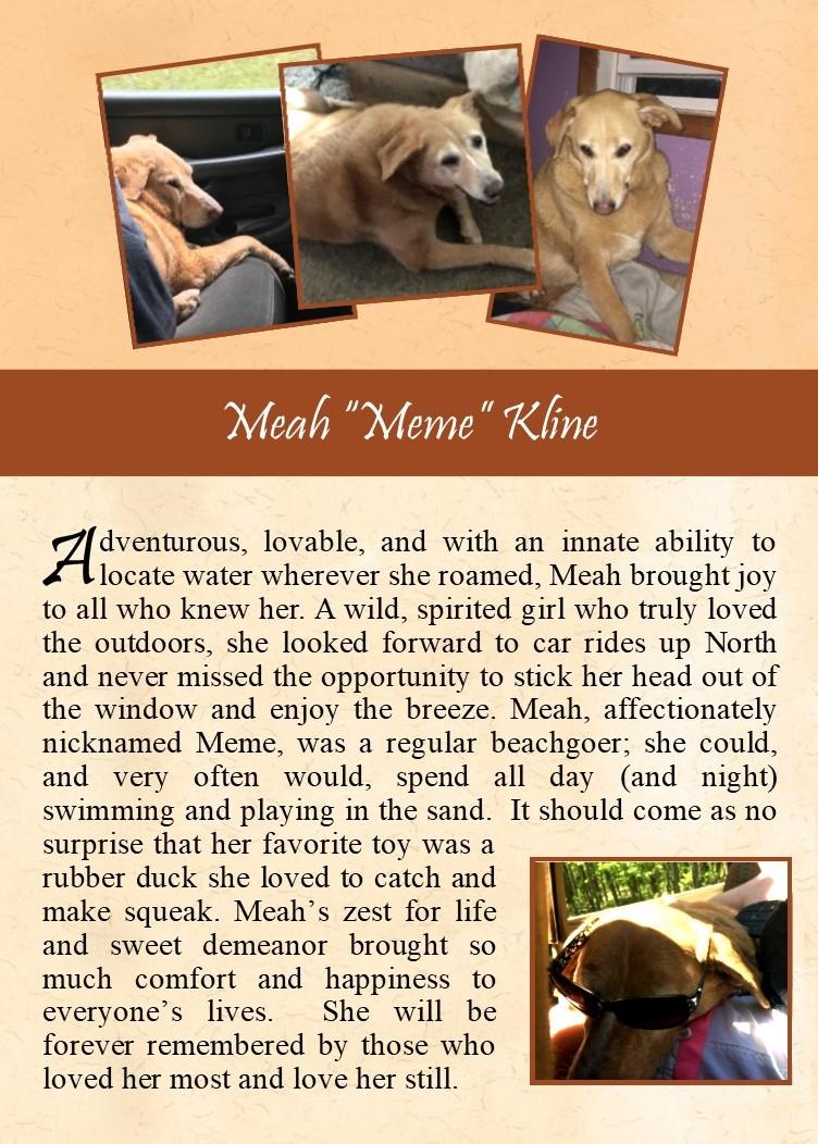 Meah Kline 2017-11-10.jpg