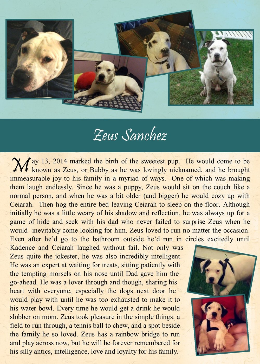 Zeus Sanchez 2017-11-08.jpg