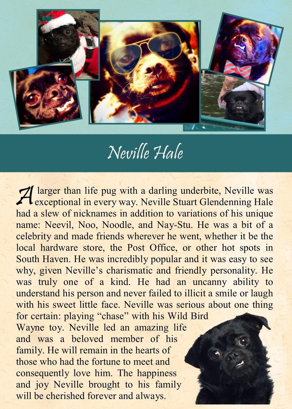 Neville Hale 2017-11-13.jpg