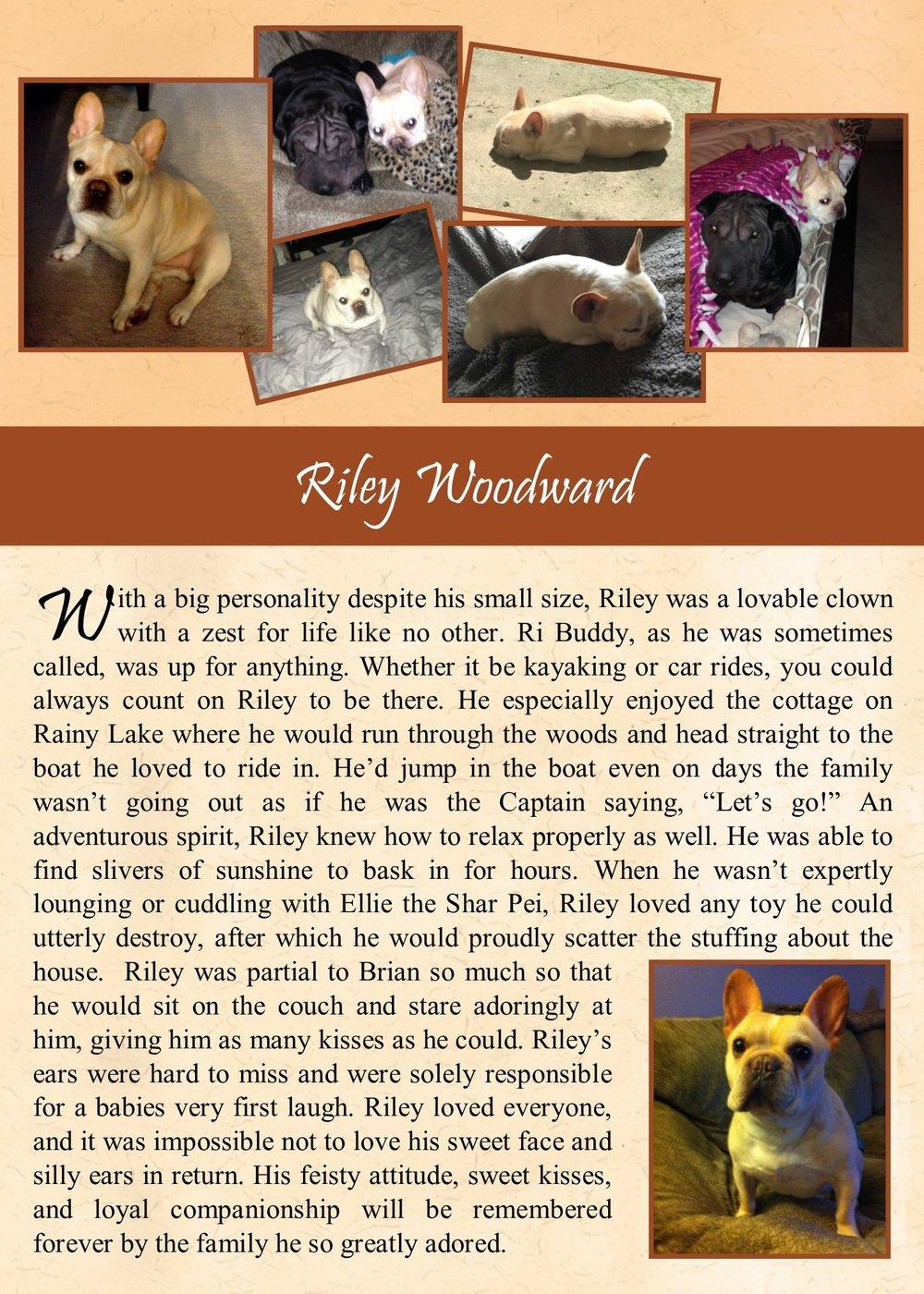 2017-12-2 Riley Woodward.jpg