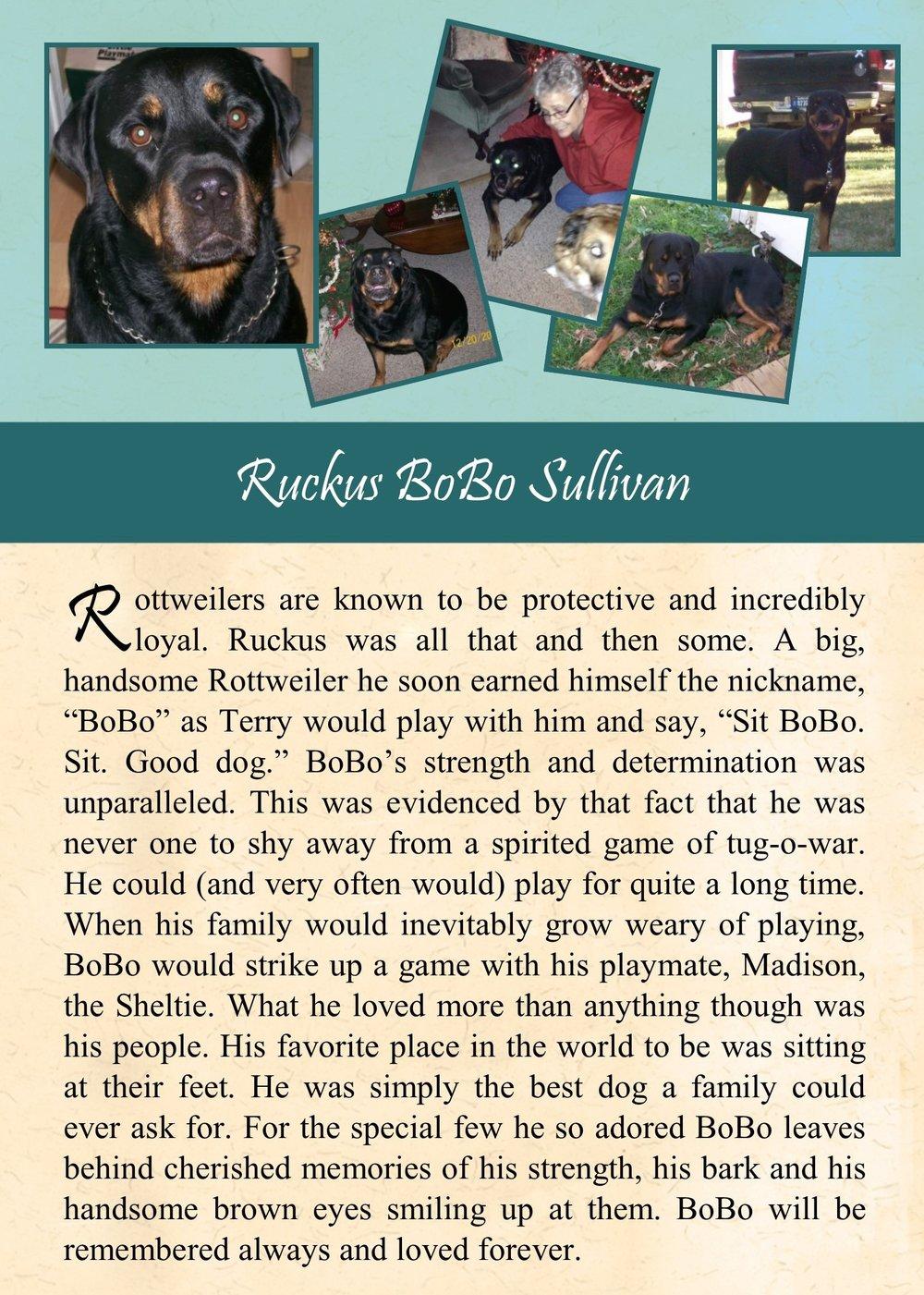 Ruckus Sullivan 2017-12-13.jpg