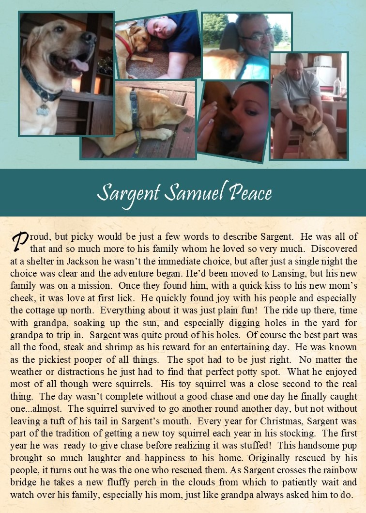 Sargent Peace 2017-12-14.jpg