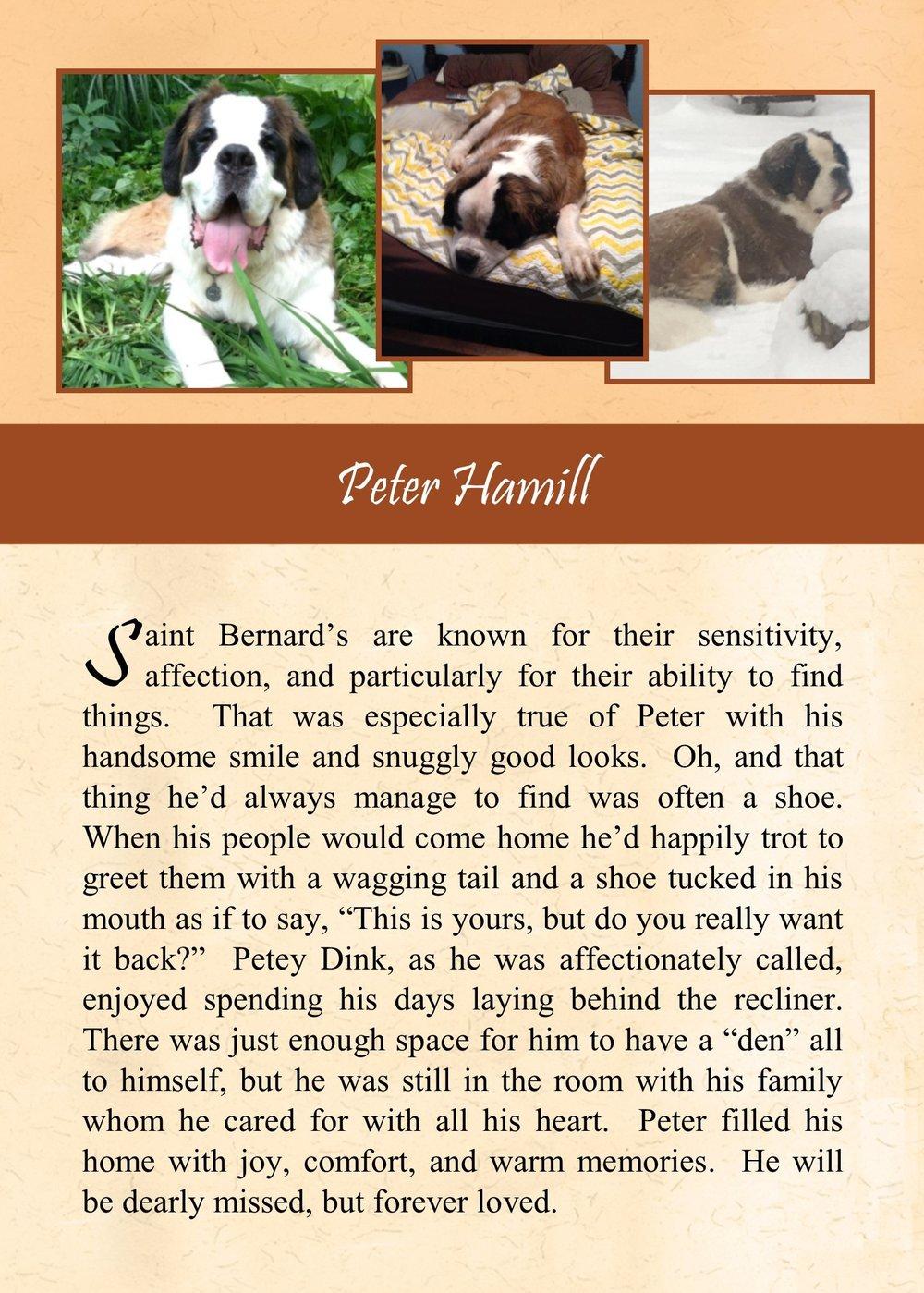 Peter Hamill 2017-12-14.jpg