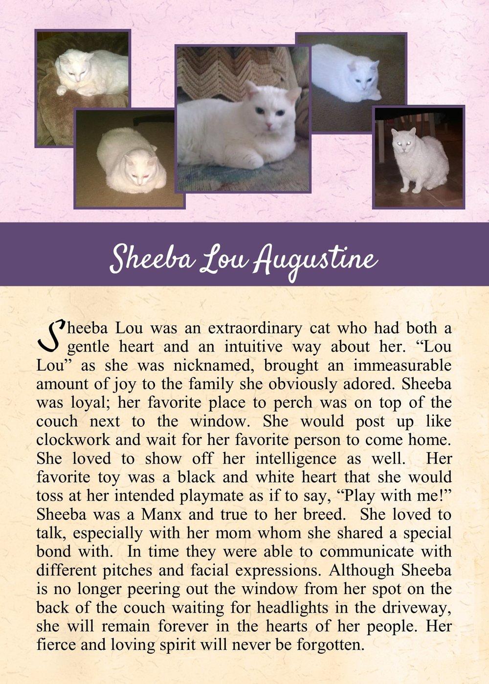 2017-12-28 Sheeba Augustine.jpg