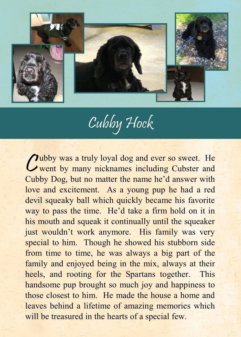 Cubby Hock