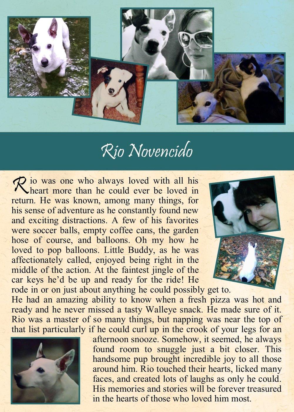 Rio Novencido.jpg