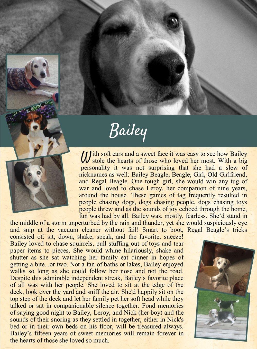 Bailey Everett