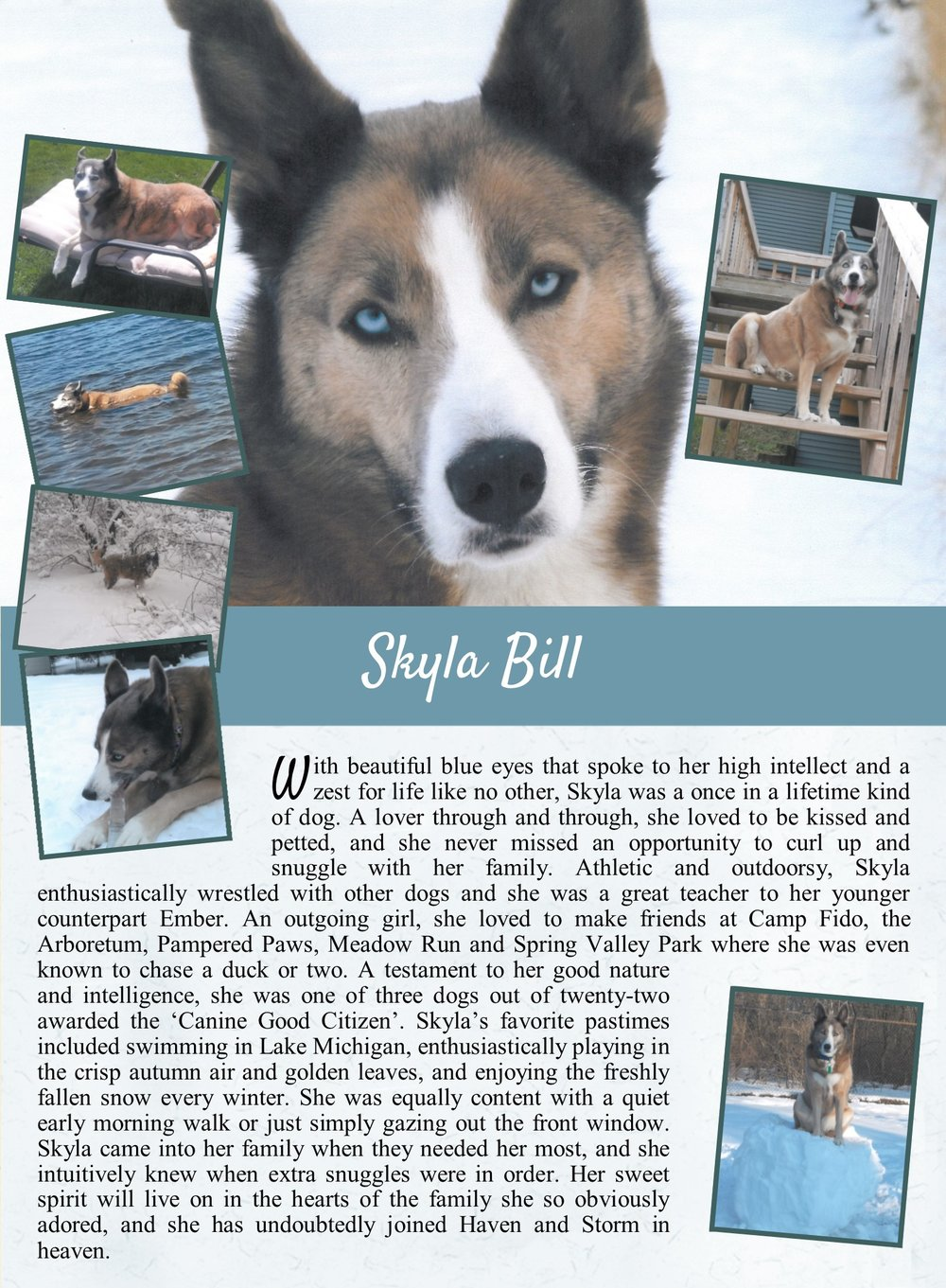 Skyla's Life Tail
