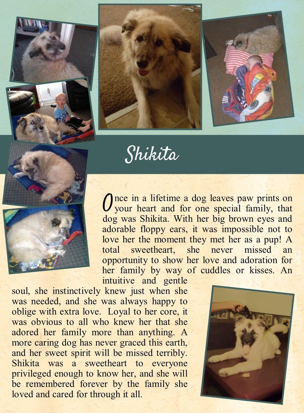 Shikita's Life Tail