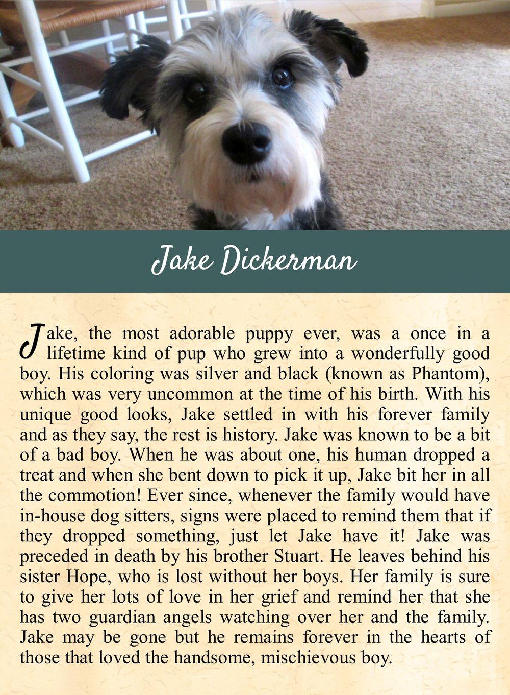 Jake's Life Tail