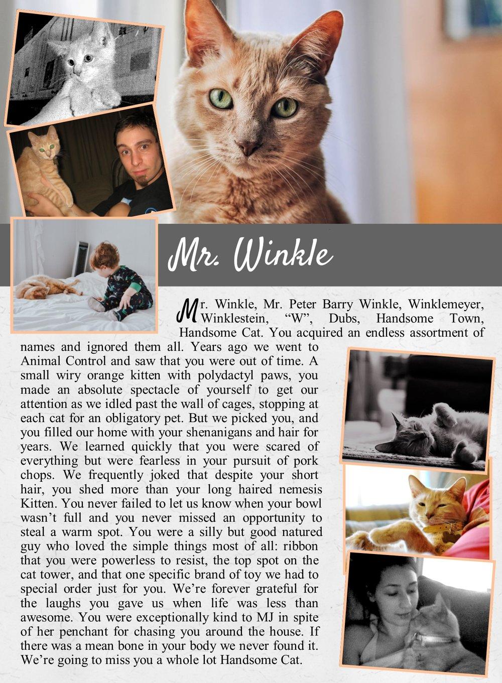 Winkle's Life Tail.jpg