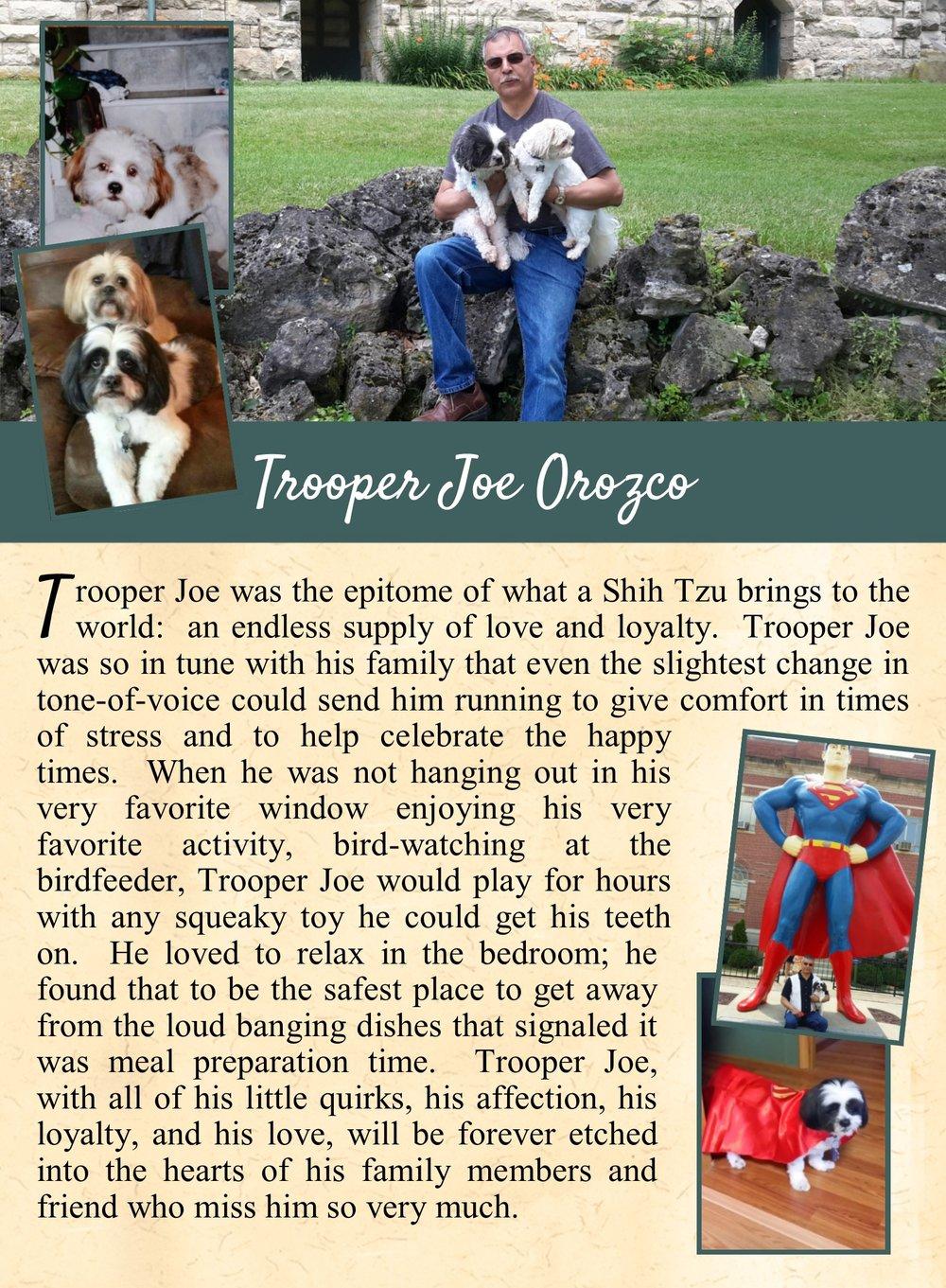 Trooper Joe's Life Tail