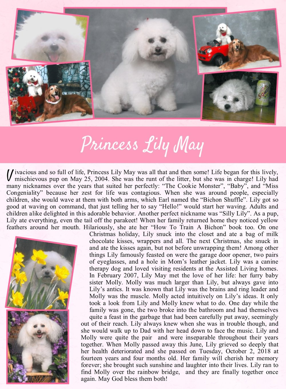 Lily May Life Tail