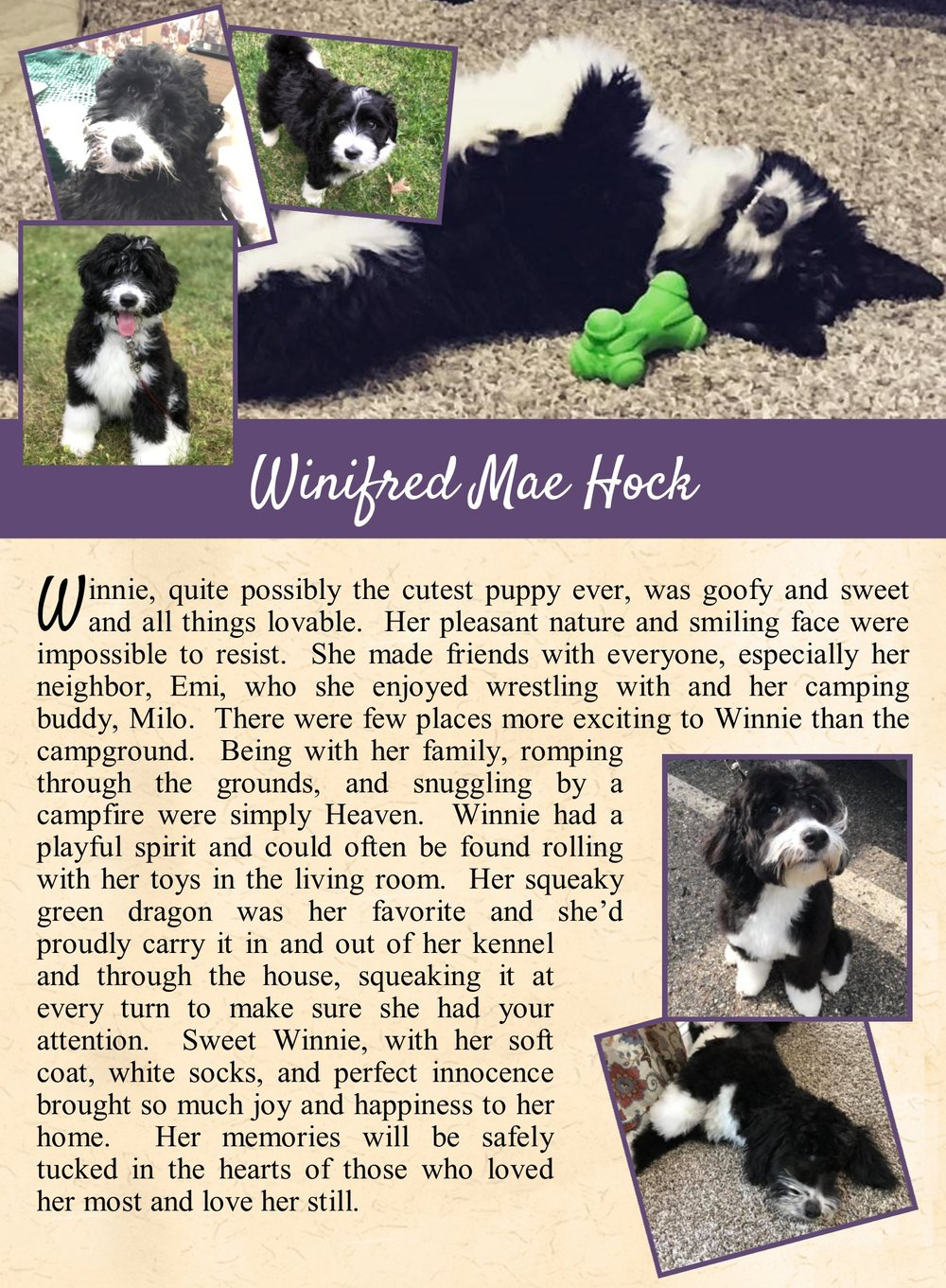 Winifred's Life tail