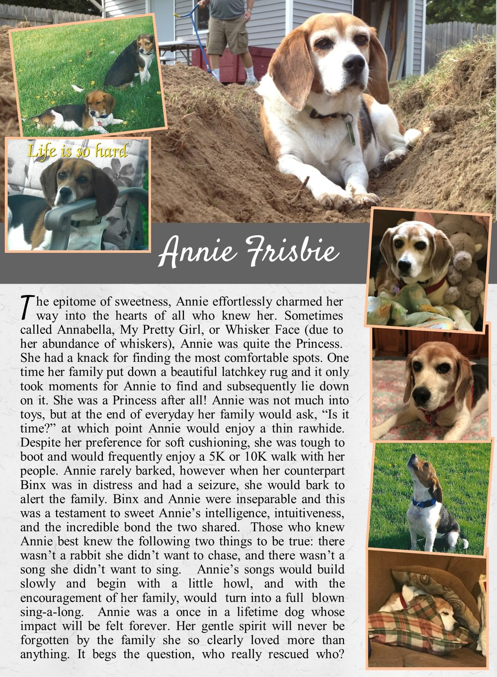Annie's Life Tail