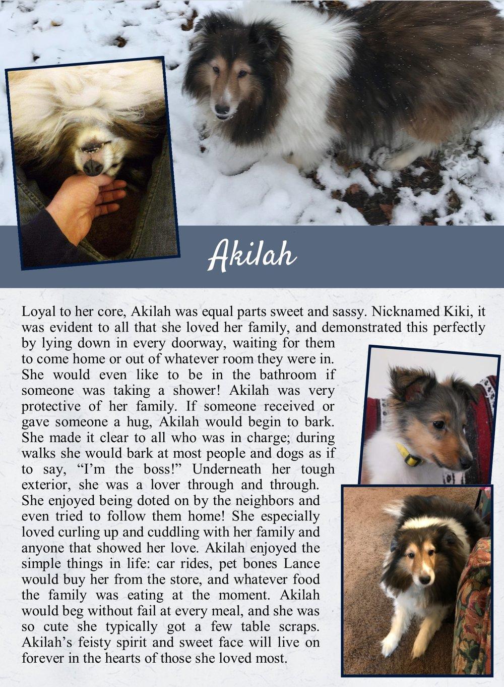 Akilah's Life Tail
