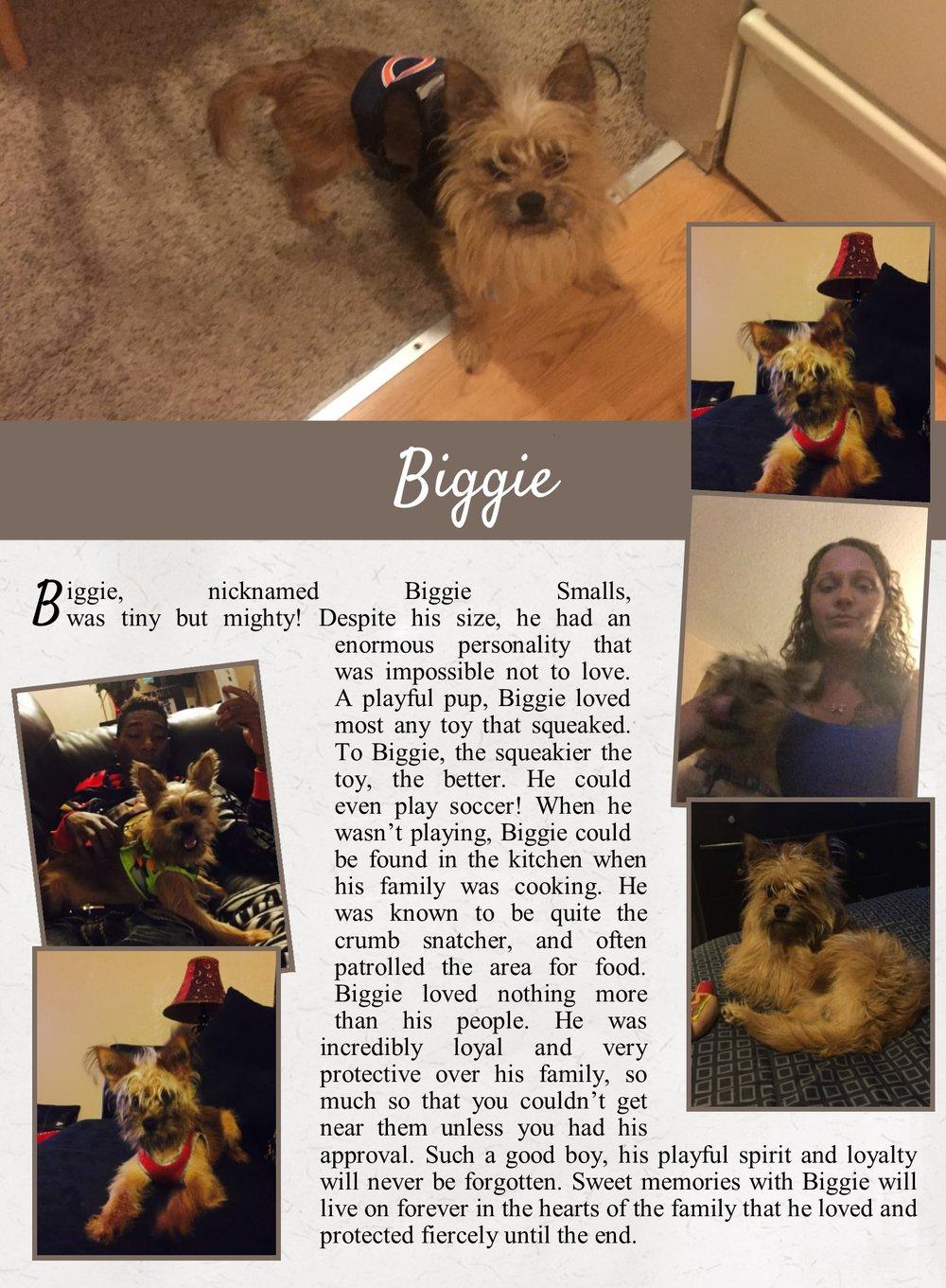 Biggie's Life Tail